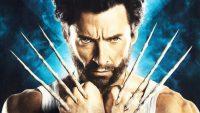 Wolverine Wallpaper 5