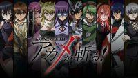Akame Ga Kill Wallpaper 3