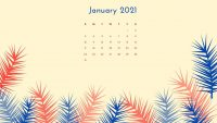 January 2021 Wallpaper 16