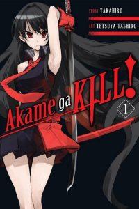 Akame Ga Kill Wallpaper 6