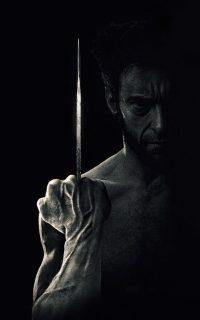Wolverine Wallpaper 17