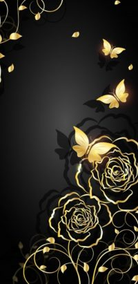 Black And Gold Wallpaper 30