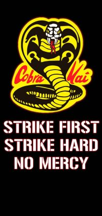 Cobra Kai Wallpaper 17