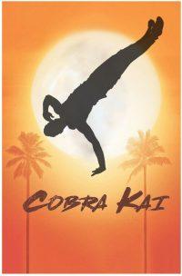 Cobra Kai Wallpaper 10