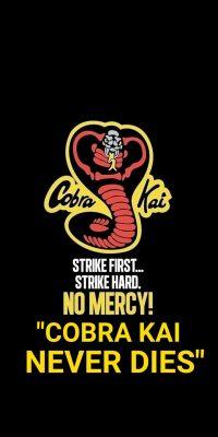 Cobra Kai Wallpaper 32
