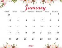 January 2021 Wallpaper 13