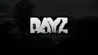 DayZ Wallpaper 28