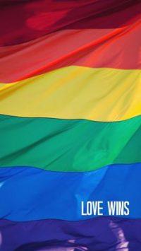 Lgbtq Flags Wallpaper 1