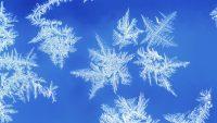 Snowflake Wallpaper 29