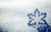 Snowflake Wallpaper 20