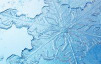 Snowflake Wallpaper 18