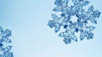Snowflake Wallpaper 6