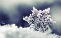 Snowflake wallpaper 30