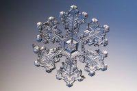 Snowflake Wallpaper 24