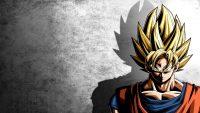 Son Goku Wallpaper 26