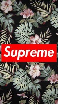 Supreme Wallpaper 46