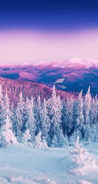 Winter Wallpaper 25