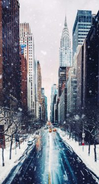 Winter Wallpaper 7