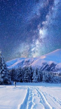 Winter Wallpaper 10