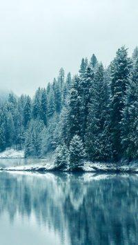 Winter Wallpaper 14