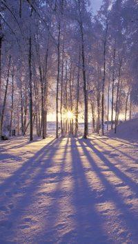 Winter Wallpaper 15