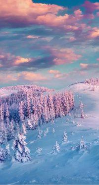 Winter Wallpaper 16
