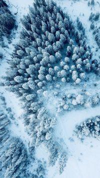 Winter Wallpaper 24