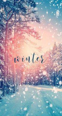Winter wallpaper 28