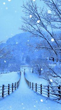 Winter Wallpaper 23