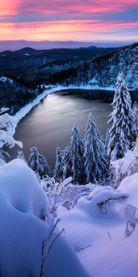 Winter Wallpaper 2