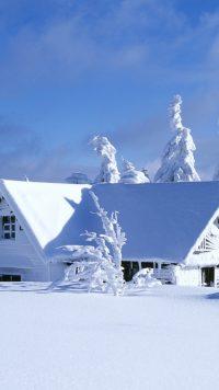 Winter Wallpaper 3