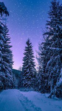 Winter Wallpaper 6
