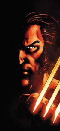 Wolverine Wallpaper 20