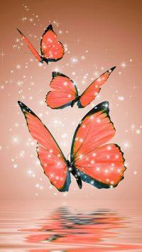 Butterfly Wallpaper 44