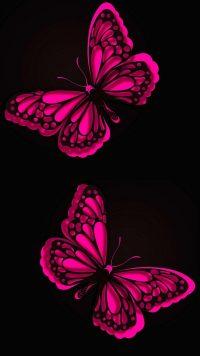 Butterfly Wallpaper 33