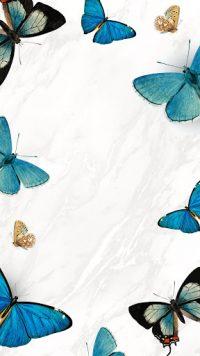 Butterfly Wallpaper 28