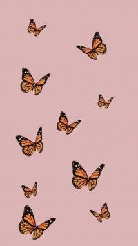 Butterfly Wallpaper 27