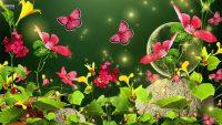 Butterfly Wallpaper 4