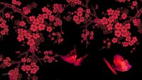Butterfly Wallpaper 7
