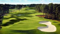 Golf Course Wallpaper 7