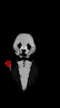 Panda Wallpaper 17