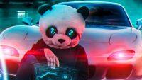 Panda Wallpaper 10