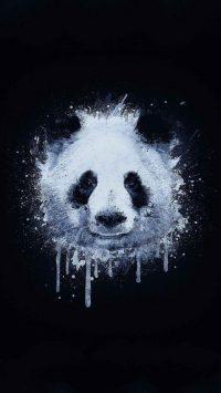 Panda Wallpaper 22