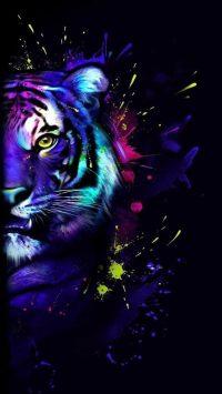 Tiger Wallpaper 4