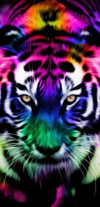 Tiger Wallpaper 3
