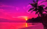 Sunset Wallpaper 1