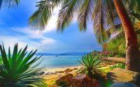 Beach Wallpaper 15