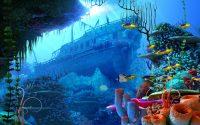 Underwater Wallpaper 8