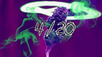 420 Wallpaper 12