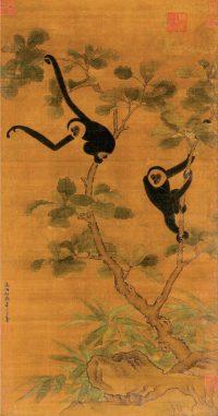 Gibbon Wallpaper 19